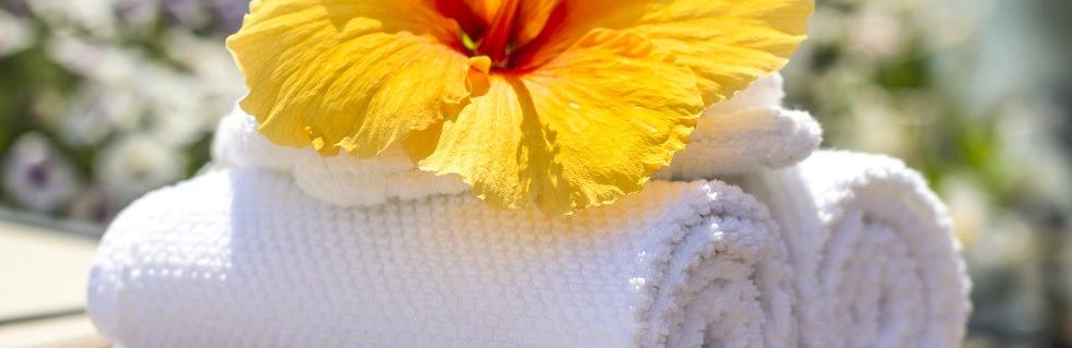 towel-981x319